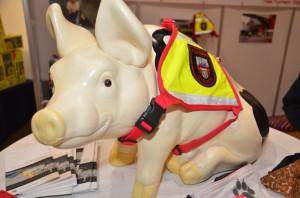 2014-02-22 Siegen RHOT_Hund_&_Heimtier 007